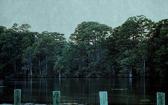 Pembroke Creek by Carolyn Ricks