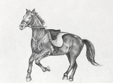 Pencil Drawing of a Running Horse by Kiril Stanchev