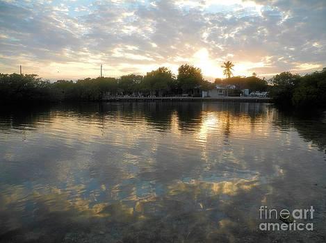 Adam Jewell - Pennekamp Sunset