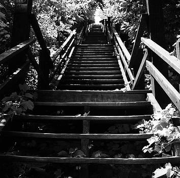 Henri Bersoux - Pennsylvania Stairway