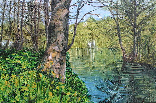 Penrhos Pond by Jenny A Jones