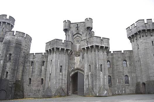 Penrhyn castle 3 by Christopher Rowlands