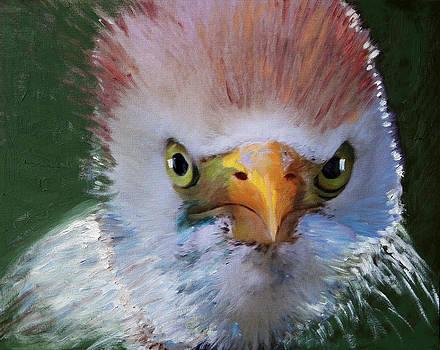 Pensive Egret by Francoise Lynch