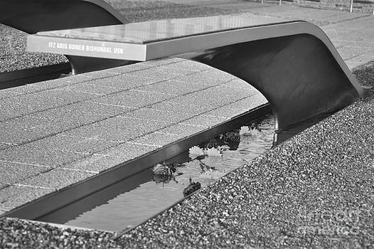 Leslie Cruz - Pentagon Memorial 2