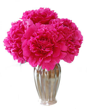 Marilyn Hunt - Peony bouquet