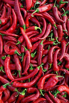 Pepper by Artem Kononenko