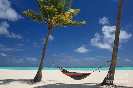 Perfect Tropical Beach by Karen Lee Ensley