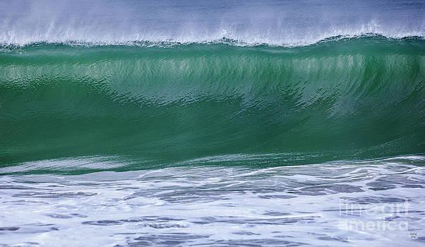 Perfect Wave Large Canvas Art, Canvas Print, Large Art, Large Wall Decor, Home Decor, Photograph by David Millenheft