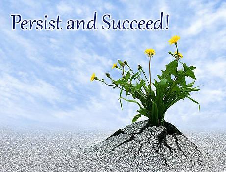Dreamland Media - Persist and Succeed