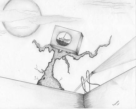 Perspective by Dan Twyman