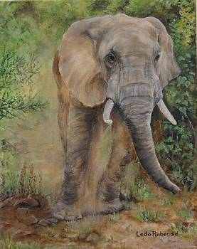 Perturbed Pachyderm by Leda Rabenold