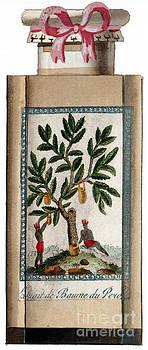 Science Source - Peru Balsam Perfume Label 19th Century