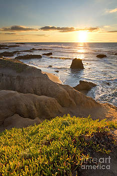 Pescadero State Beach at Sunset by Matt Tilghman