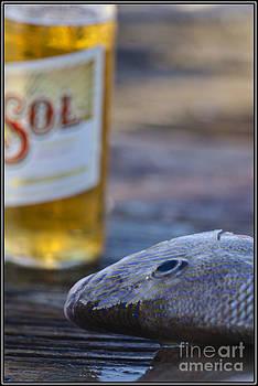 Agus Aldalur - Pescado y Sol