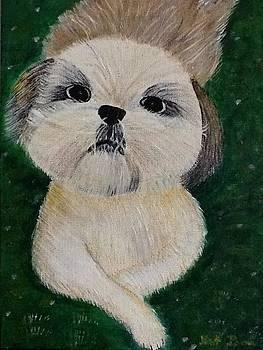 Pet dog by Kat Poon