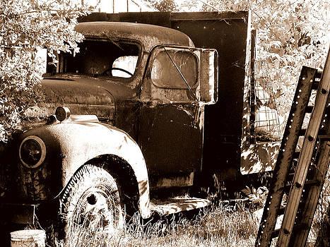 Petaluma Truck by Mamie Gunning