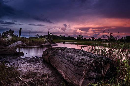Petrified Dusk by Richard Kook