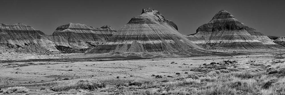 Petrified Forest National Park by Eugene Dailey