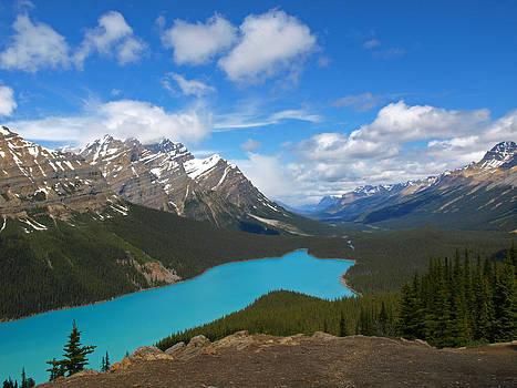 Peyto Lake by Mary Vandenberg
