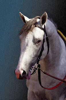 Angela A Stanton - Phantom Lover - Portrait of a Race Horse
