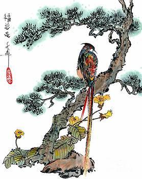 LINDA SMITH - Pheasant on Pine