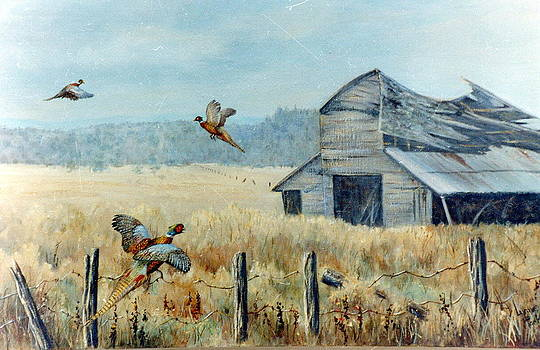 Pheasants Retreat by Lynne Parker