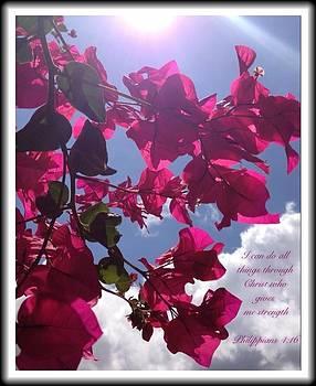 Philippians 4 16 by Scripture Pictures