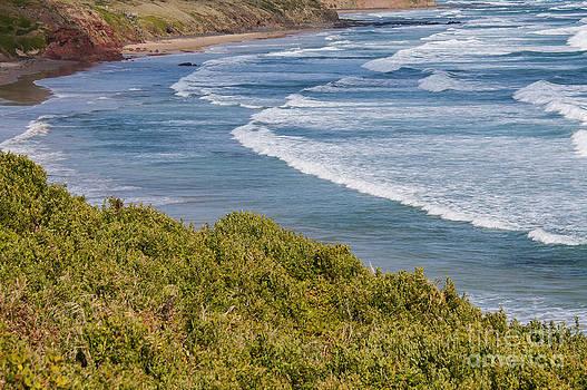 Bob Phillips - Phillip Island Beach