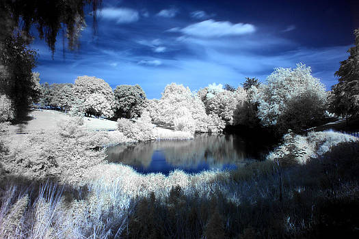 Phoenix Park Infrared by Arnold Nagadowski
