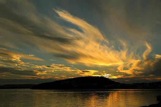 Qing  - Phoenix Sunset