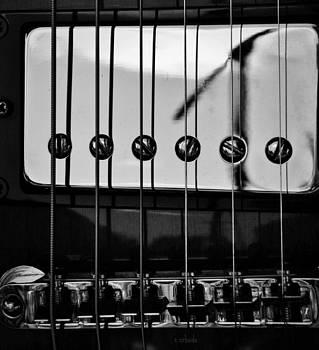 Chris Berry - phone pole reflection