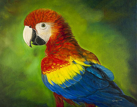 Phoenix  by Virginia Butler