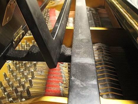 Piano- Behind the Scenes by Karma Gurung