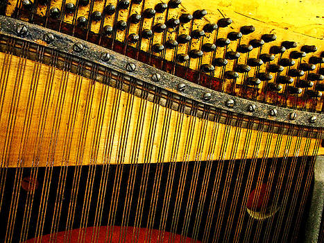 Randi Kuhne - Piano Harp