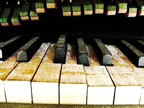 Randi Kuhne - Piano Keyboard