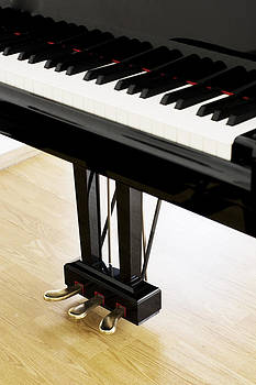 Newnow Photography By Vera Cepic - Piano pedals