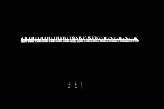 Piano's spirit by Sorin Papuc
