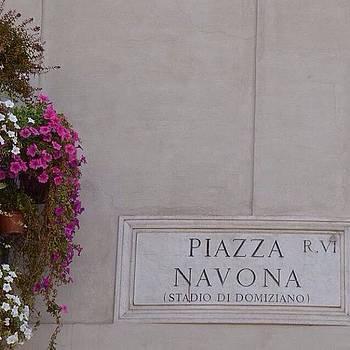 Eve Tamminen - Piazza Navona