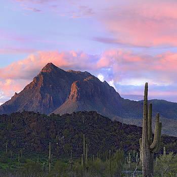 Picacho Mountain in Arizona by Tim Fitzharris