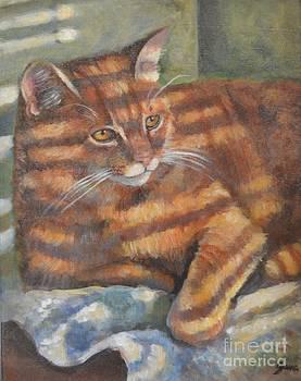 Picasso by Jana Baker
