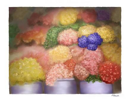 Pick Me Flower Shop by Pat Edsall