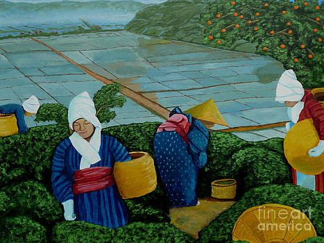 Picking the Green Tea by Anthony Dunphy