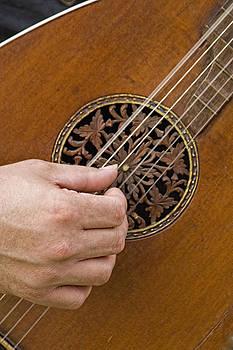 Pick'n -a classic Mandolin by Michael Flood
