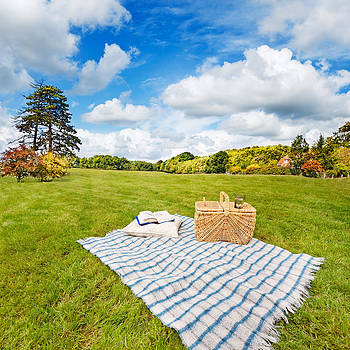 Jo Ann Snover - Picnic blanket and basket in sunny field