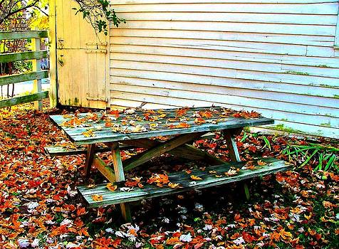 Picnic Table in Autumn by Julie Dant
