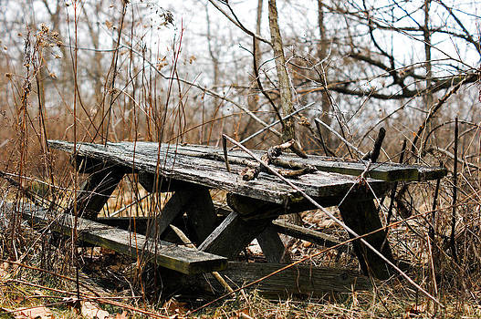 Picnic Table by Off The Beaten Path Photography - Andrew Alexander