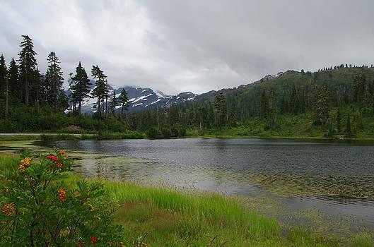 Marilyn Wilson - Picture Lake on Mt. Baker
