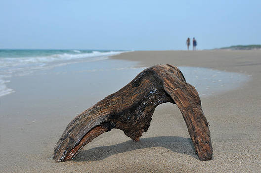 Piece of drifted wood on the sand and blue ocean with couple on horizon by Anton Oparin