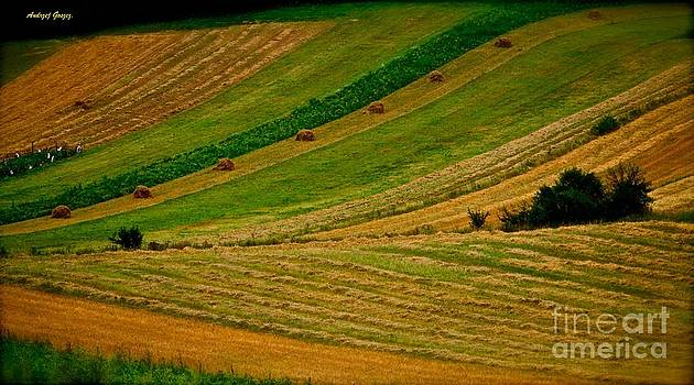Pieniny Mountains - Pages of my diary. 14th august 2013. by  Andrzej Goszcz