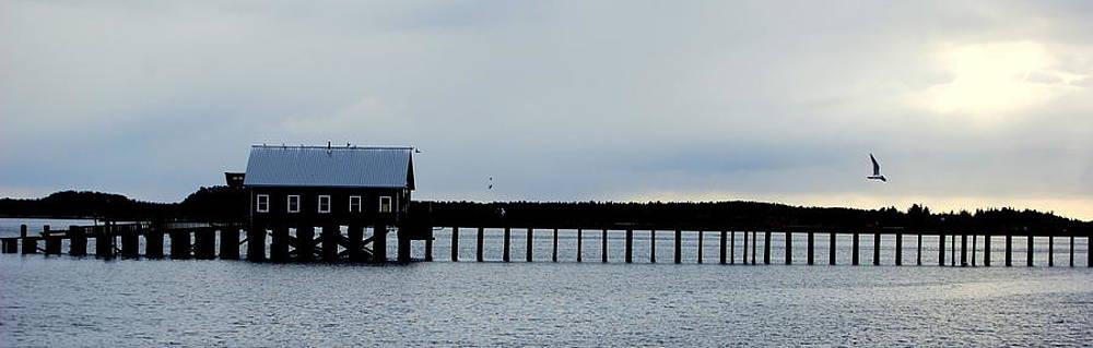 Pier Panorama by Mamie Gunning